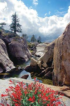 Enjoy the locals' side of Tahoe