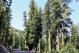 071014-TahoeTime_road_c.TH