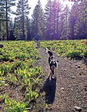 Adventure await at Tahoe Cross Country