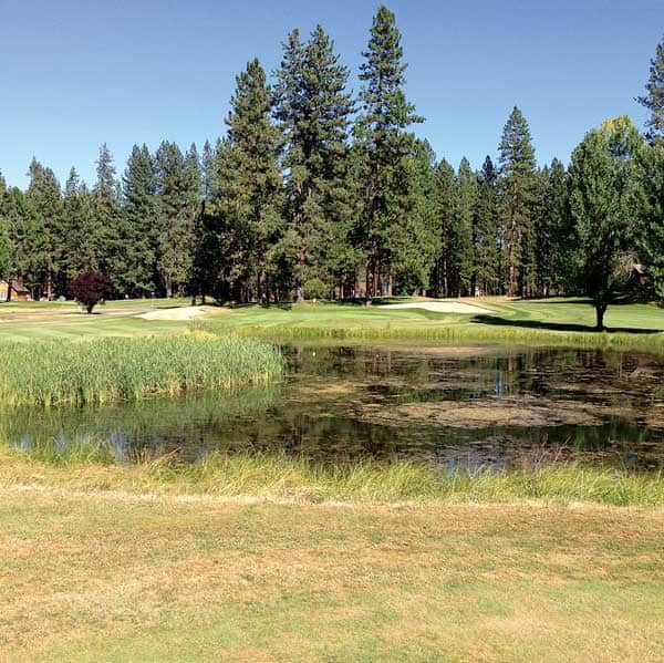 082516-Golf_Plumas_c.JohnDee_0489