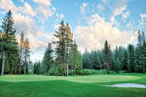 050814-Golf-Tahoe-Donner