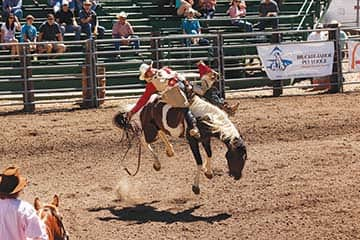 082114-Rodeo_8042