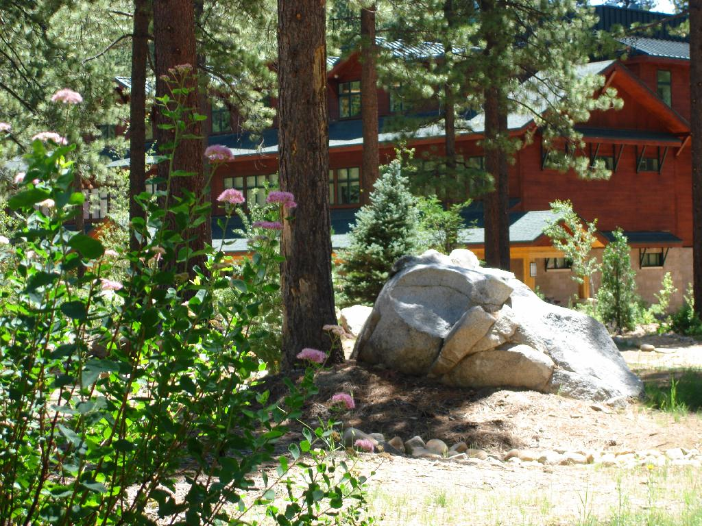 New Stewards For Educational Garden Tahoe Weekly